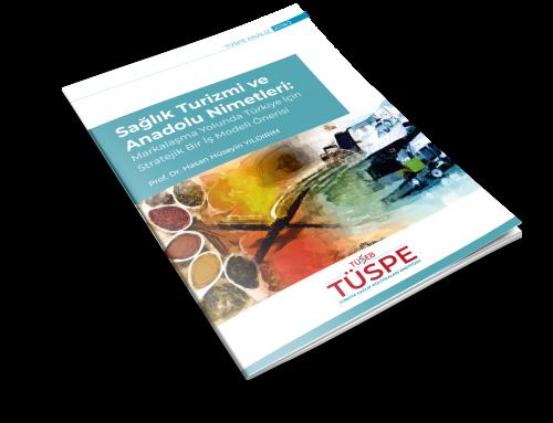 Sağlık Turizmi ve Anadolu Nimetleri: Türkiye İçin Stratejik Bir İş Model Önerisi